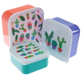 Lunchboxen set  - Cactus