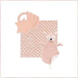 Cadeaupakket Baby's Eerste Tandjes Pale Pink