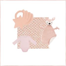 Cadeaupakket Baby's Eerste Tandjes Roze