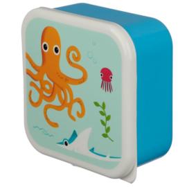 Set 3 snackboxen zeedieren Inktvis, Haai, Zeepaardje