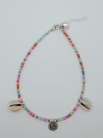 Multicolor schelpjes *