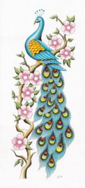 'Peacock' art print