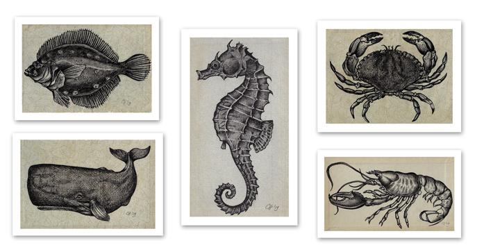 Set van 5 'Sealife' prints