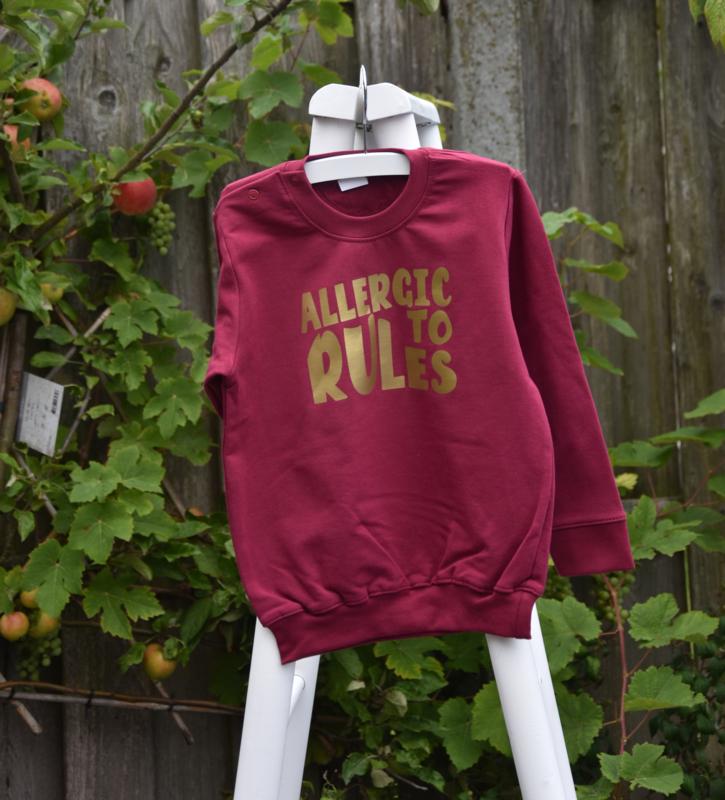 Allergic to rules sweater Burgundie