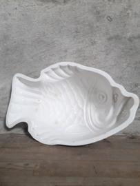 Maestricht vis
