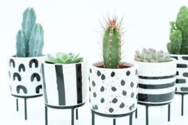 Interieur complete deal (5,5 cm) Black & White