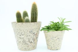 Werkplantpakket Ecocreme