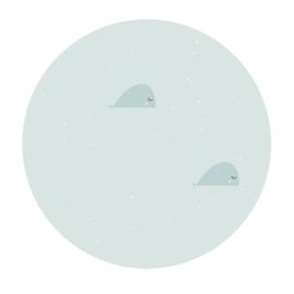 Muurcirkel Mint groene walvissen  - 3mm dik - 30cm