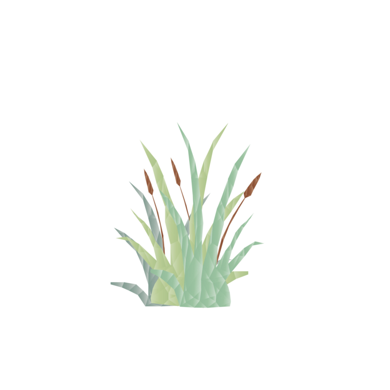 Diamond Forest Friends - vijverplant  muursticker