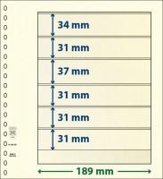 Lindner T-Blanco blad met 6 stroken (Lindner 802601) (per stuk)