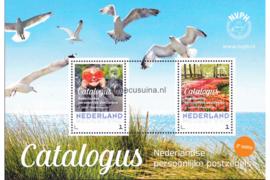 Nederland NVPH 3012-B-5 Postfris Geschenk velletjes (Persoonlijke Postzegels) Velletje NVPH catalogus persoonlijke postzegels 2e editie 2015