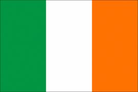 Velletje met vlaggen Ierland 72 stuks