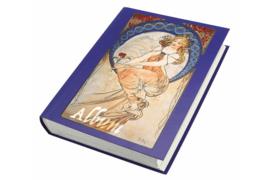 SAFE Nostalgie Insteekboek Blauwe kaft / 60 blz. Witte bladen (SAFE 100)