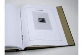 DAVO Luxe supplement Belgie Niet Aangenomen Ontwerpen NA18 (2009)