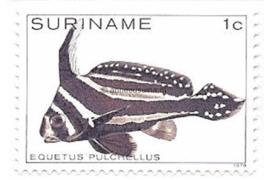 Zonnebloem 172 Postfris (1 cent) Tropische vissen 1979
