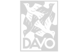 DAVO Luxe supplement Nederland Velletjes Kerstvel/Decembervelletje (V147a) 2016
