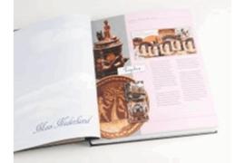 DAVO Luxe supplement Mooi Nederland (Geillustreerd Verzamelen) 2014