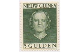 Nederlands Nieuw Guinea