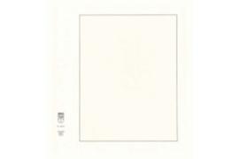 Lindner Blanco blad  Wit karton, Zwarte kaderlijn (193 x 251), Grijze kaderlijn (Lindner 802a) (per stuk)