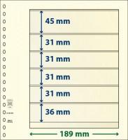 Lindner T-Blanco blad met 6 stroken (Lindner 802604) (per stuk)