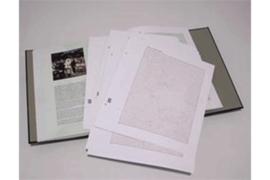 DAVO Luxe blanco bladen 100 jaar Vorstinnen (per 10 stuks)