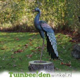 Metalen tuinbeeld figuur ''De elegante pauw'' TBW18212