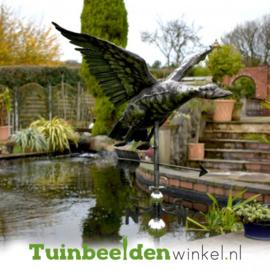 Windwijzer ''Vliegende eend'' Tbw0871pr85