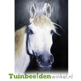 Olieverf schilderij dieren ''Het witte paard'' TBW001814