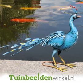 Dieren tuinbeeld ''De blauwe pauw 2'' Tbw0871pr55