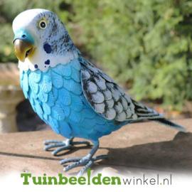 Dieren tuinbeeld ''De blauwe parkiet'' Tbw0871pr45