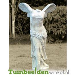"Standbeeld ""Venus"" TBW4br401br"