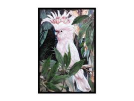 Olieverf schilderij dieren ''Witte kaketoe'' TBW27254sc