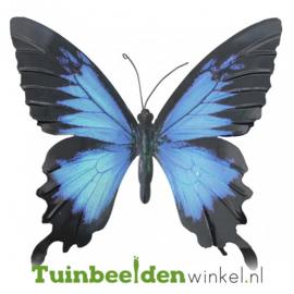 Metalen vlinder ''Blauw en zwart metalen vlinder'' TBW0871pr72