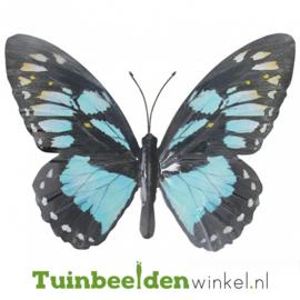 Metalen vlinder ''Lichtblauwe metalen vlinder'' TBW0871pr69