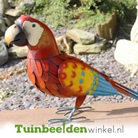 Dieren tuinbeeld ''De rode papegaai'' Tbw0871pr46