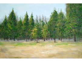 """Olieverf schilderij landschap """"Het bos"""" TBW004589sc"""