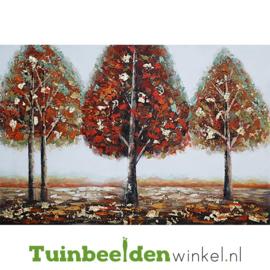 Olieverf schilderij landschap ''Mooie herfstdag'' TBW006143