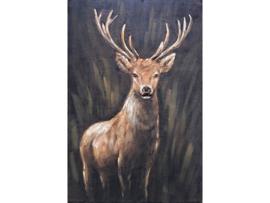 Olieverf schilderij dieren ''Het nieuwsgierige hert'' TBW006266sc