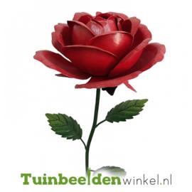 Metalen bloem ''Grote rode roos'' Tbw0871pr102