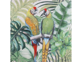 Olieverf schilderij dieren 'De papegaaien'' TBW25112sc
