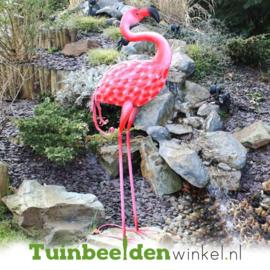 Dieren tuinbeeld ''De roze flamingo'' Tbw0871pr17