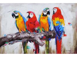 """Olieverf schilderij dieren """"De papegaaien"""" TBW4336sc"""