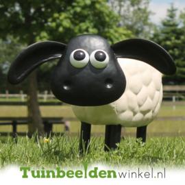 Dieren tuinbeeld ''Timmy het schaap'' Tbw0871pr60