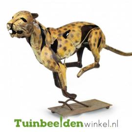 Dieren tuinbeeld ''De jachtige jaguar'' Tbw0871pr11