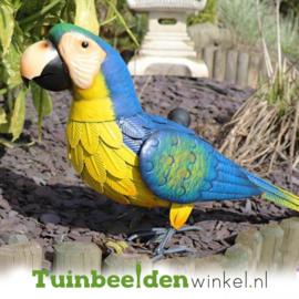Dieren tuinbeeld ''De blauwe papegaai'' Tbw0871pr47