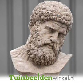 """Borstbeeld """"De wijze man"""" op sokkel TWB3br319br"""