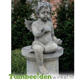 """Engelen beeld """"Engel met duif"""" op sokkel TWB3br223br"""