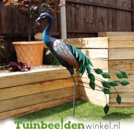 Dieren tuinbeeld ''De staande pauw'' Tbw0871pr51