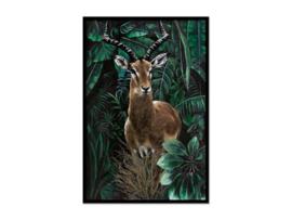 Olieverf schilderij dieren ''Antilope'' TBW27180sc