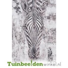 Olieverf schilderij dieren ''De mooie zebra'' TBW006981